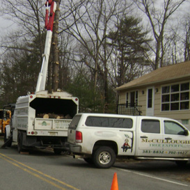 Our Trucks, Tree Trimming in Sussex, NJ