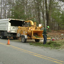 Our Truck, Tree Removal in Sussex, NJ